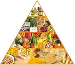 En esta imagen aparece la pirámide de alimentación vegana